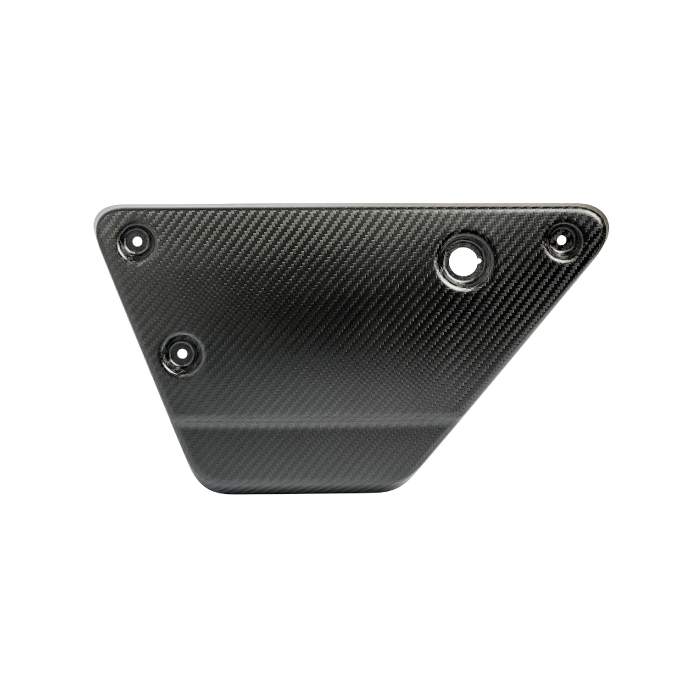 Image of Right Carbon Side Panel